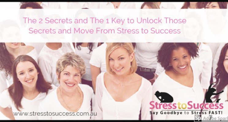 The 2 Secrets and the 1 Key to Unlock Those Secrets and Move From Stress to Success